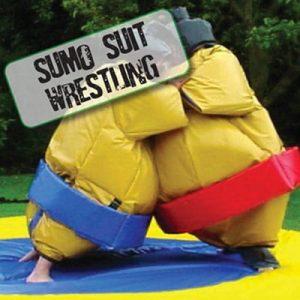 sumo-suit-wrestling